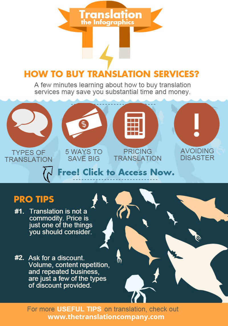 Infographics - 5 Facts You Should Know Before Buying Translation
