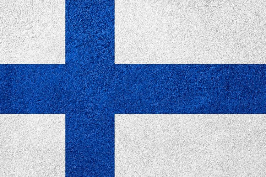 Professional Finnish Translators